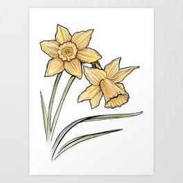 Daffodil: New beginnings Art Print