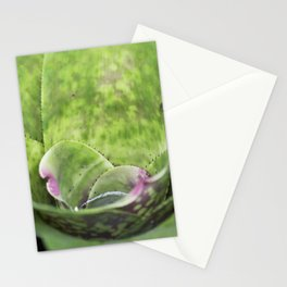 Cup a Cactus Stationery Cards
