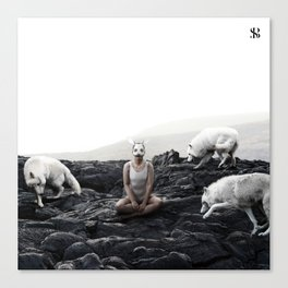 The White Sky VII Canvas Print