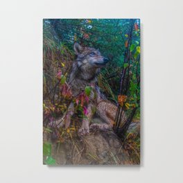 Wolf Pup in the Forest Metal Print