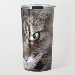 Heterochromic Maine Coon Cat Travel Mug