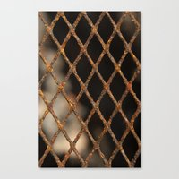 cage Canvas Prints featuring Cage by Bruce Stanfield