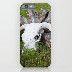 Buffalo skull iPhone 6s Slim Case