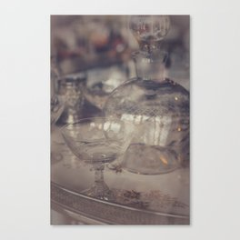 Fragile Views Canvas Print