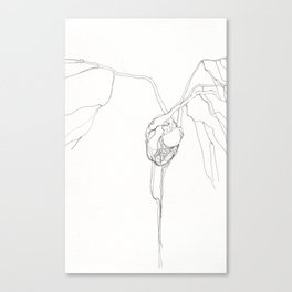 Untitled Heart No. 1 Canvas Print