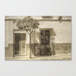 Door #12 Canvas Print