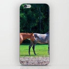 Pasture Friends iPhone Skin