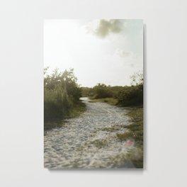 Sandy path Metal Print
