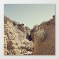 Desert Rut Canvas Print