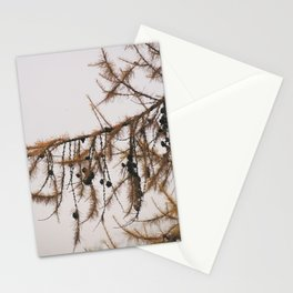 Pine tree in the autumn Stationery Cards
