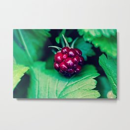 Berry Metal Print