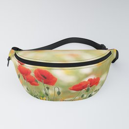 A song for all seasons. Fanny Pack