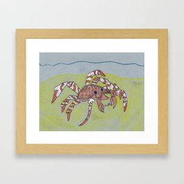 Spider Crab Framed Art Print