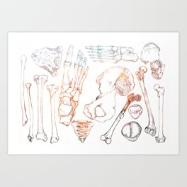 Lower Extremity Skeleton Art Print