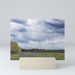 Field of Camas and Dandelions, No. 2 Mini Art Print