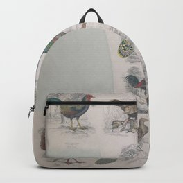 Gall Birds, 125 Backpack