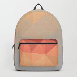 Retro Mesh Backpack