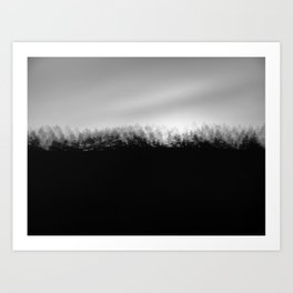 Pine Trees High Res Black and White Landscape Photography Art Print