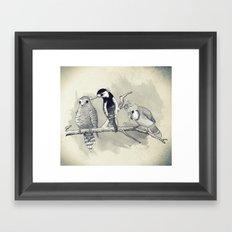 The Tree Stooges Framed Art Print