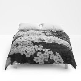 Blossom Comforters