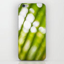 Glimpse iPhone Skin