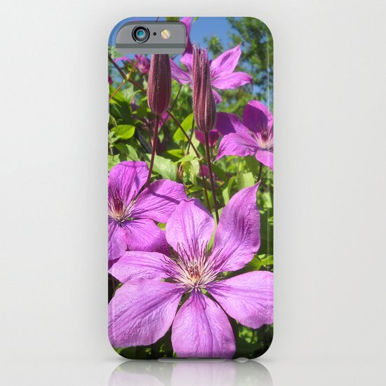 Clematises iPhone & iPod Case