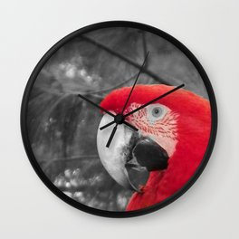 TOUCH OF RED - PARROT Wall Clock