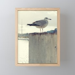 Möwe Kiel Framed Mini Art Print