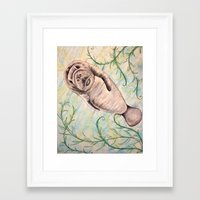 manatee Framed Art Prints featuring Manatee by Ginster72