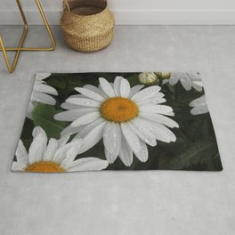 Daisy with Water Droplets Rug