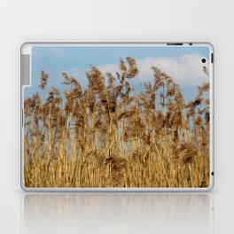 Lenz gently blowing the stalks Laptop & iPad Skin