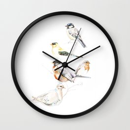 Birds of the Midwest Wall Clock