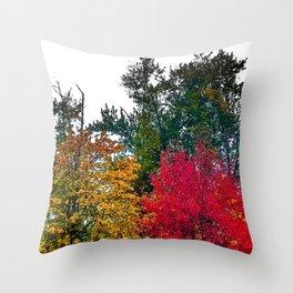 Portland, Oregon 2018 Throw Pillow