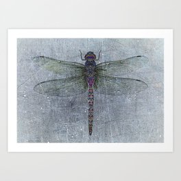 Dragonfly on blue stone and metal background Art Print