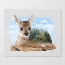 Baby Roe Deer Canvas Print