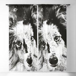 border collie dog 5 portrait wsbw Blackout Curtain