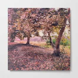 Autumn Forest Visalia Metal Print
