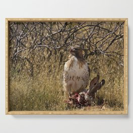6139 - Red-Tailed Hawk Feeding Serving Tray