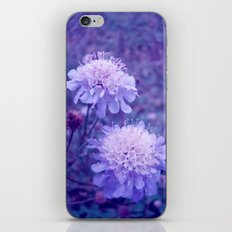 Meadow of Dreams iPhone & iPod Skin