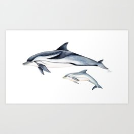 Striped dolphin Art Print