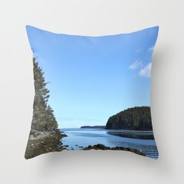 Alaskan Beach Photography Print Throw Pillow