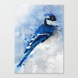 Watercolour blue jay bird Canvas Print