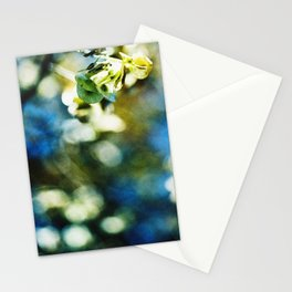 Swirl of Fall Stationery Cards