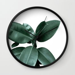 Rubber fig Plant Wall Clock