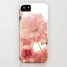 Spring Blossoms (2) iPhone Case