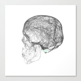 skull trails black Canvas Print