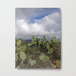 Green Mountain Top Cactus Amongst White Clouds  Metal Print