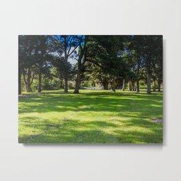 River Trail Park Metal Print