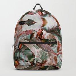 Augmenta Aliena Backpack