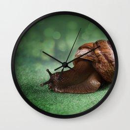 Garden snail on a green leaf Wall Clock